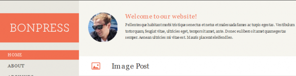 Free Responsive wordpress theme Bonpress
