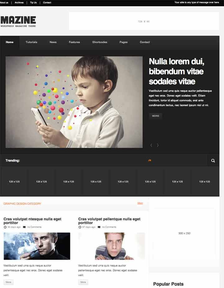 responsible Magzine theme for wordpress