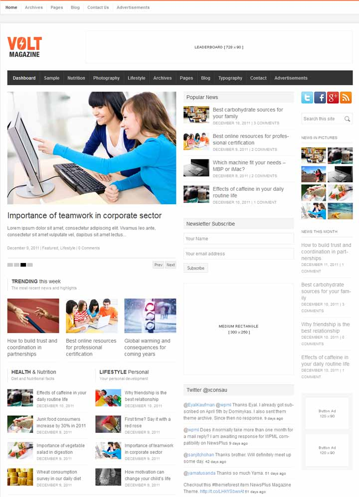 premium responsive Google adsense optimized wordpress themes