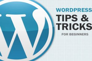 how to hide wordpress error message