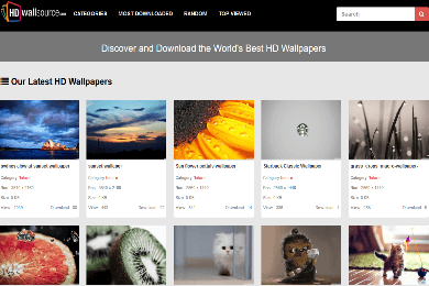swarnima-Wallpaper -WordPress-theme