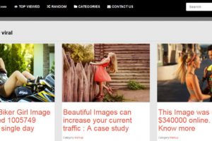 Viral Content WordPress theme