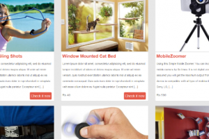 gift gallery WordPRess theme.jpg