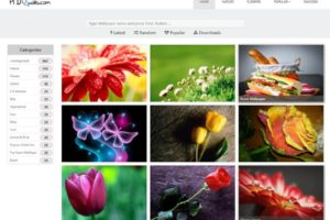 Wallpaper WordPress theme
