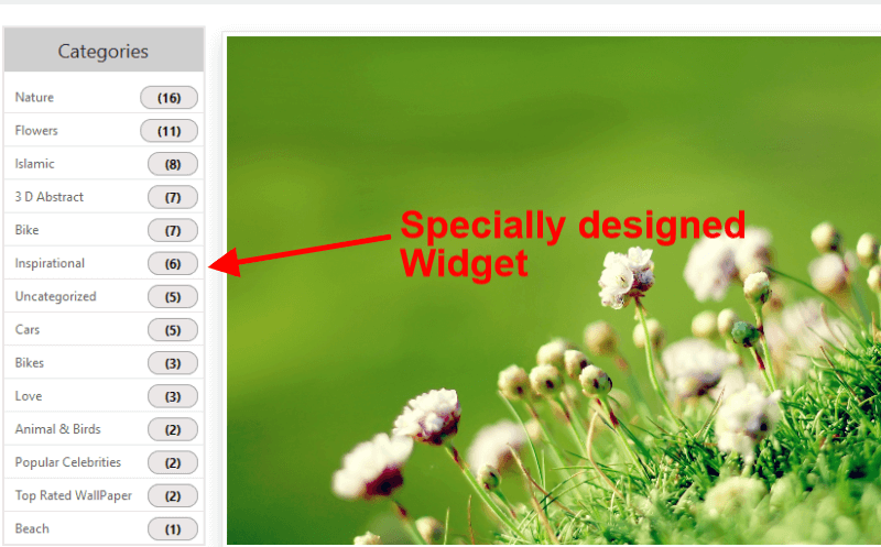 specially designed widget