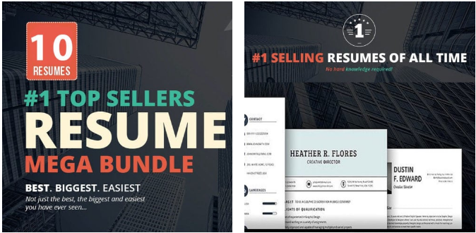 Meet Top 10 Premium Resume Templates Bundles
