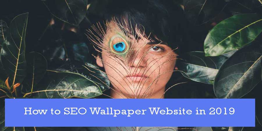 seo-wallpaper-website